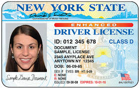 Sample NY Drivers License